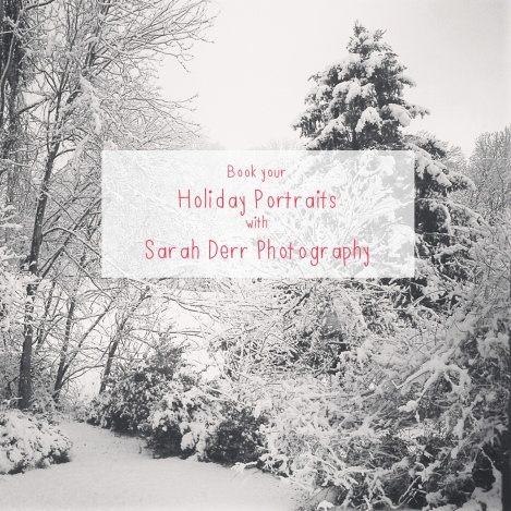 holiday portraits flyer